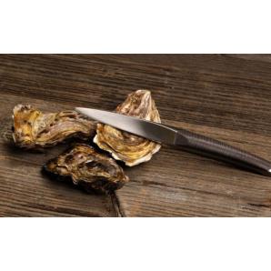 Sknife Oyster knife ash (75mm)