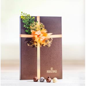 Fibel Pralinés & Truffes - Aeschbach Chocolatier (28er)