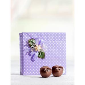 Müsli Aeschbach Chocolatier (9 Stk)