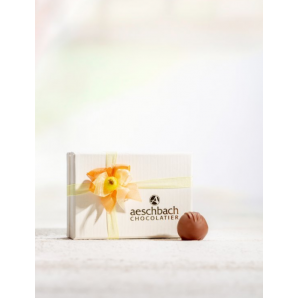 Pralinés Elegance Aeschbach Chocolatier (6 Stk)