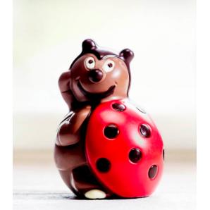 Aeschbach Chocolatier Chocolate Lucky Beetle (100g)
